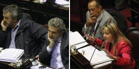 Antes del receso: los debates por la ley de glaciares en Diputados y por el matrimonio gay en el Senado auguraronn un semestre caliente