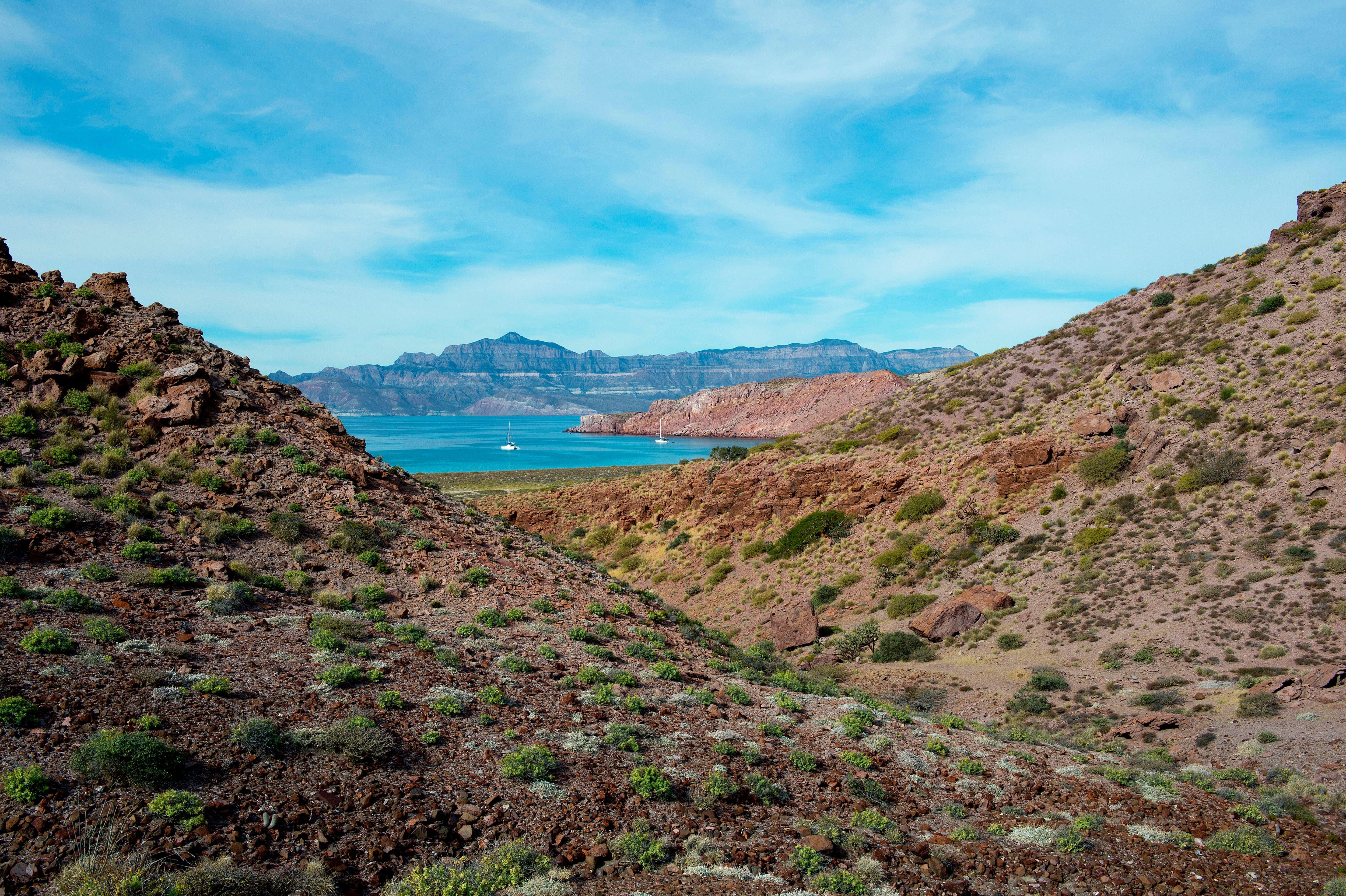 Una galería de arte a cielo abierto, una playa paradisíaca, un mirador de estrellas. En Los Cabos mexicanos, las postales de película se vuelven reales.