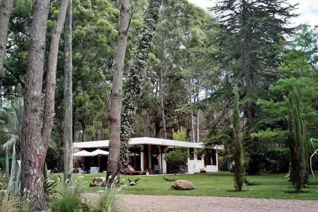 Confié la reforma de la casa al estudio Doss B, formado por Gianni Bazzano y Willy Dos Santos, dos talentosos arquitectos uruguayos que supieron devolverle a la casa su esplendor original, explica el propietario.