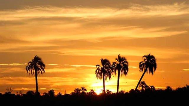 ¿Ya conocés El Palmar? Uno de los paisajes más característicos de la mesopotamia que podés recorrer en bici