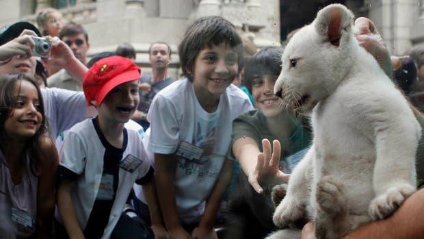 El Zoo de Buenos Aires