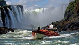 Cerraron las Cataratas de Iguazú: buscan a un puma que merodea por el parque