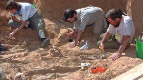 El trabajo de los forenses para recuperar los restos de los guerrilleros