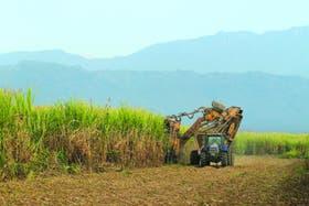 El Gobierno buscó agilizar la exportación de la producción azucarera