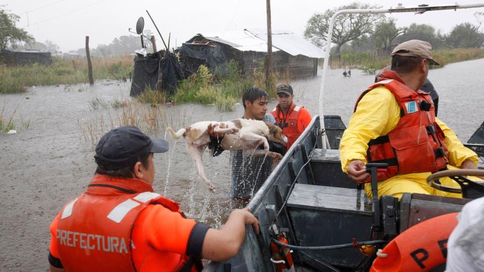 Un joven salva a su perro de morir ahogado y lo sube al bote de trefectura. Foto: LA NACION / Mauro V. Rizzi /Enviado especial