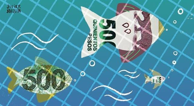 La acuicultura es el rubro de producción de alimentos que crece más rápido a nivel nacional