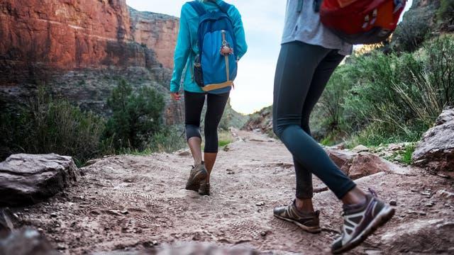 Las caminatas son ideales para recorrer algunos tramos del parque. Para el resto, se pueden utilizar los ómnibus gratuitos
