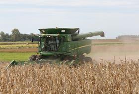 La mayor superficie con maíz, uno de los motivos por los cuales subió el consumo de gasoil