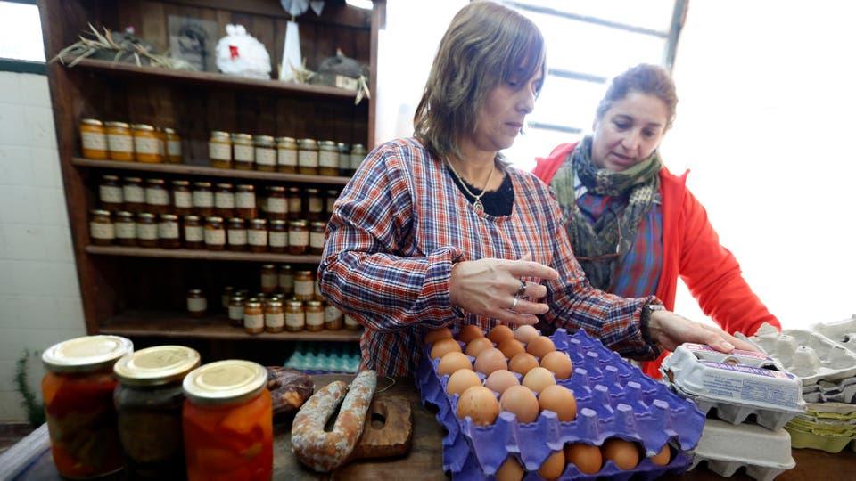 """Como las gallinas necesitan un cuidado diario, cada curso se hace cargo de las tareas de un día de la semana. """"Hay que juntar los huevos, ponerles alimento balanceado y ver que no se hayan lastimado"""". Foto: LA NACION / Mauro V. Rizzi"""