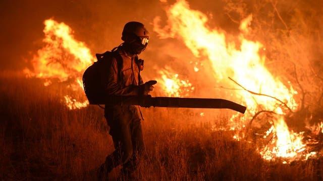 El 2016 fue uno de los años más cálidos de la historia y dejó importantes consecuencias; incendios y sequías