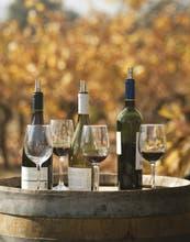 Todo lo que deberías saber sobre vinos