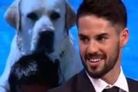 """Conocé qué jugador de Real Madrid le puso """"Messi"""" a su perro y no lo saca a pasear para no llamarlo por su nombre"""