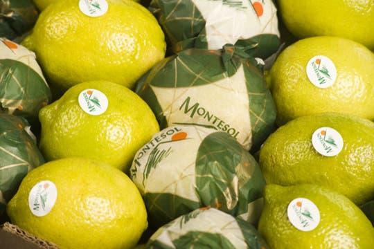 Caja de exportación de limones. Foto: http://lamoraleja.com.ar