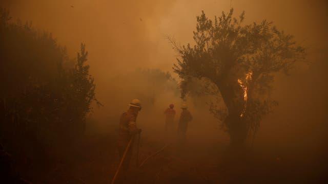 Bomberos trabajan para apagar un incendio forestal en el pueblo de Carvoeiro, cerca de Castelo Branco, Portugal.