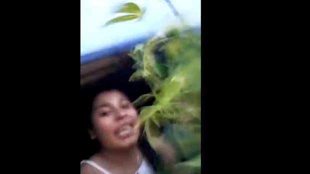 Dos policías se filmaron con una planta de marihuana robada