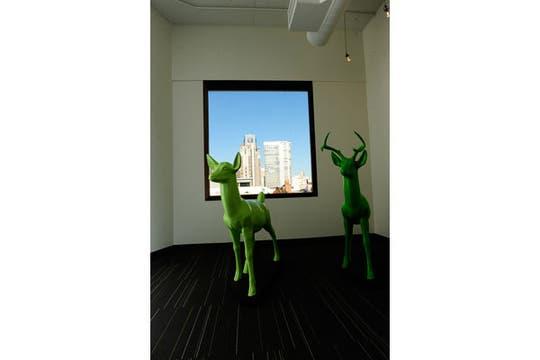 Una recorrida por el interior de las oficinas de la compañía, que ya va por su tercera mudanza de edificio. Foto: Twitter