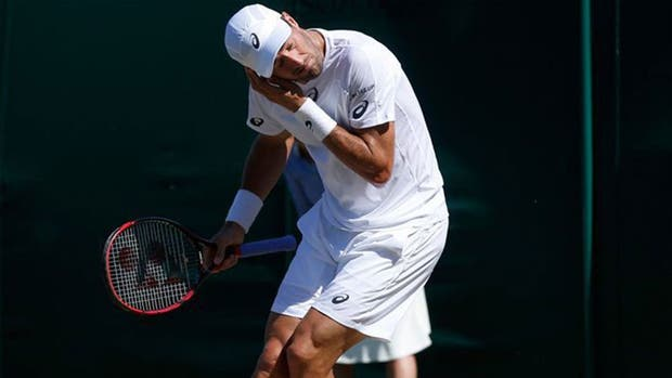 Los tenistas sufren la invasión de hormigas voladoras