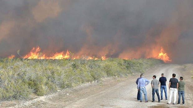 Incendio en Península Valdés