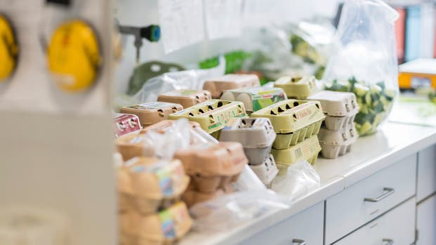 Retiran de los supermercados alemanes millones de huevos procedentes de Holanda por sospechas de la presencia de una sustancia peligrosa