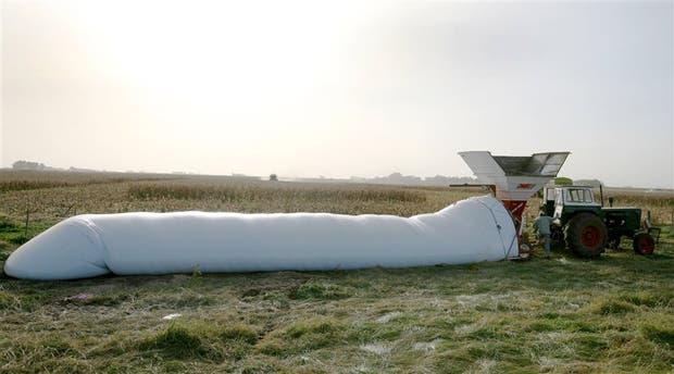 Es crucial el tiempo de permanencia de los granos en el silobolsa