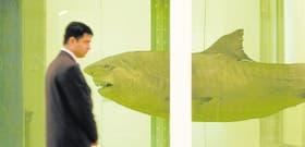 El tiburón en formol de Damien Hirst, ejemplo de trangresión.