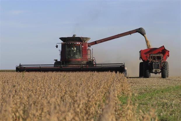 El USDA prevé una cosecha de soja de 57 millones de toneladas para la Argentina