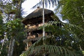 Camuflados entre árboles, los lodges son modernos y cómodos