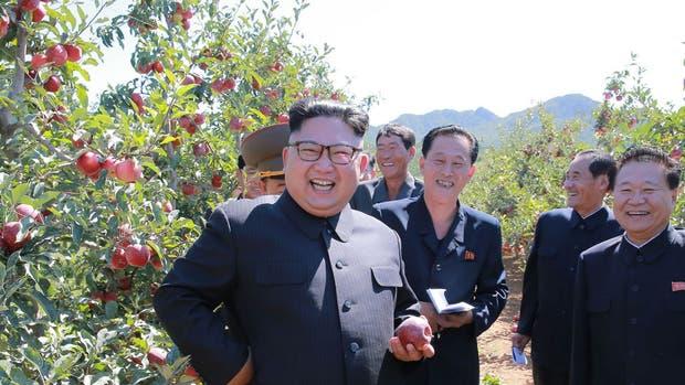 Kim visita una plantación de frutas, en una foto difundida ayer por el régimen