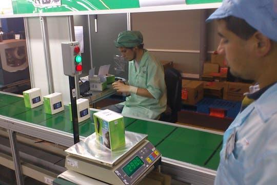 Línea de armado final en la fábrica que produce los equipos para Sony Ericsson. Foto: Gentileza Sony Ericsson