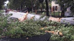 Tres personas murieron en Pilar por la caída de un árbol durante el temporal