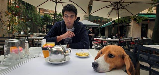 En el bar Museo Evita aceptan mascotas y Oliver, un simpático Beagle, disfrutó junto a su dueño