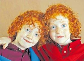 Como dos gotas de agua: Emiliano y Tomás Fernández Tolnai (6 años) son gemelos y viven en Viedma