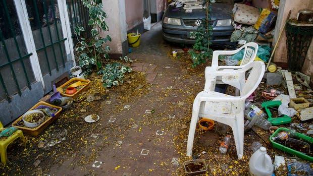 A este patio, en la calle Monasterio, ayer no pudieron entrar los fumigadores