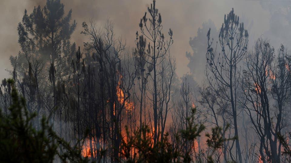 Un feroz incendio afecto gran parte del norte de Lisboa en Portugal. Foto: AP / Paulo Duarte