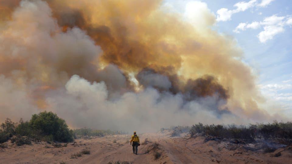 Se reactivaron los focos de incendios forestales en Mendoza y La Pampa