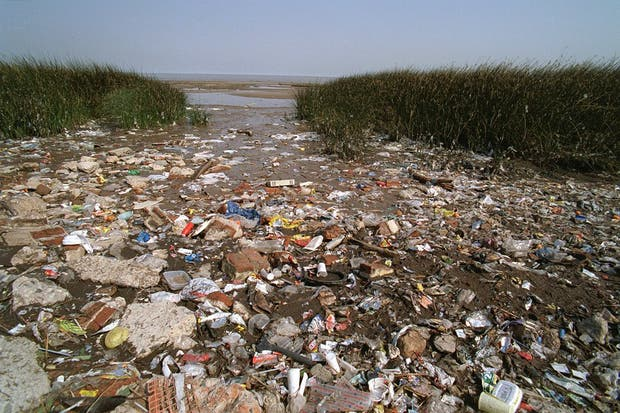 El plástico, una constante en la costa bonaerense