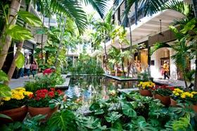 Bal Harbour Shops es el shopping que más factura en todo el mundo