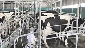 El gobierno santafecino quiere intervenir en el mercado lácteo