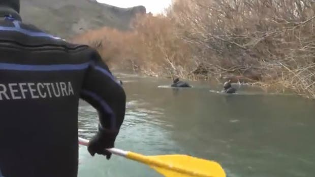 Así es la búsqueda por agua de Santiago Maldonado