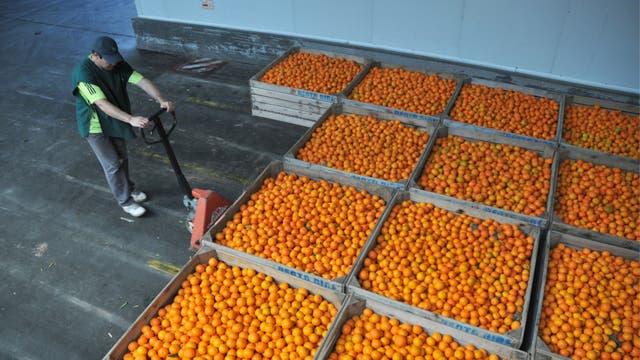 Un punto de acopio de alimentos que desechan empresas y supermercados, y que se transforma en alimento en comedores escolares