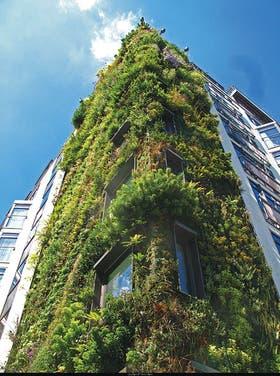 Más oxígeno. El Athenaeum Hotel, en Londres, es uno de los tantos edificios favorecidos por el ingenio de Patrick Blanc, creador de las fachadas verdes que se ven en estas páginas