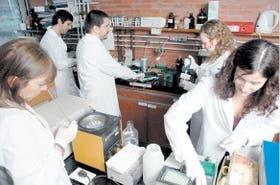 Los investigadores buscan terapias más efectivas contra la tuberculosis