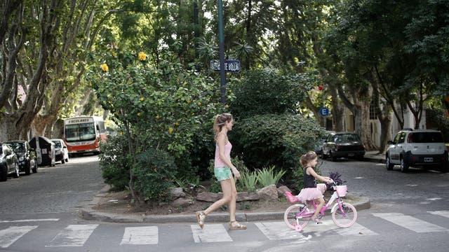 """La arboleda típica de los bulevares de Villa Devoto, que se ganó el título del """"Jardín de Buenos Aires"""". Foto: LA NACION / Daniel Jayo"""