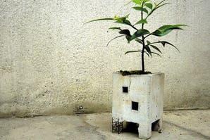 Mini edificios para plantas