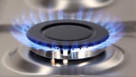 Aranguren: aumentará el gas entre 30 y 40%