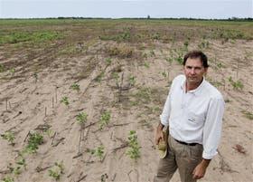 """José Luis Schahovskoy: """"Hay lotes de soja que se perdieron o abandonaron por la sequía"""", dijo este productor de Las Breñas, en la provincia del Chaco"""