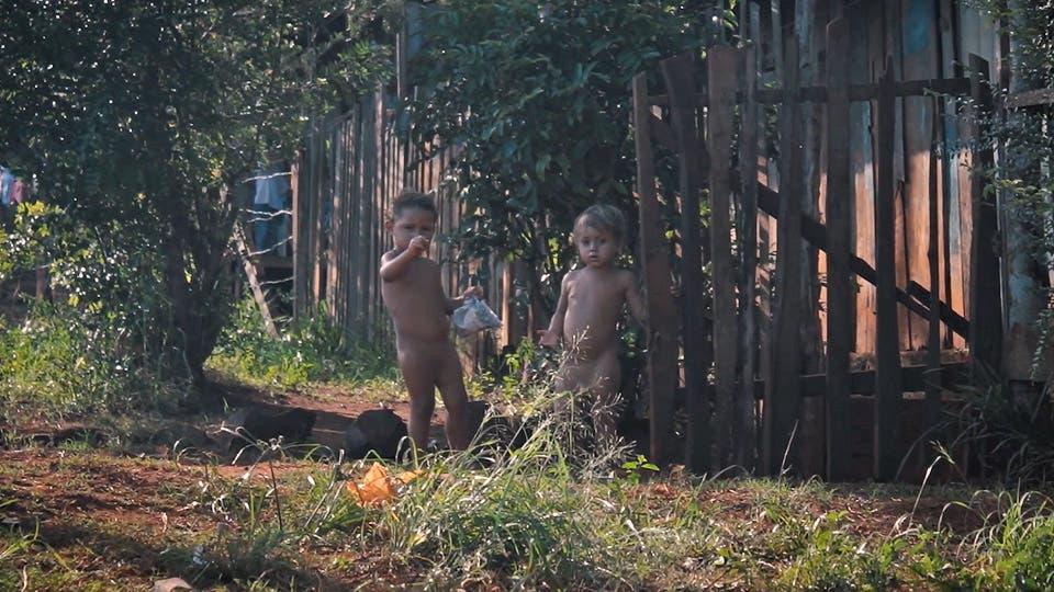 El 16% de los chicos, hijos de tareferos, nunca asistió a la escuela . Foto: Gentileza Posibl