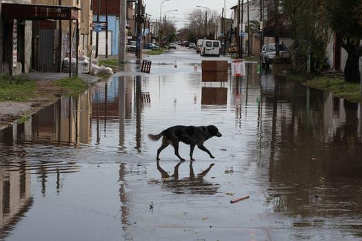 Continúa el mal tiempo y se agrava la situación en las zonas inundadas. Berisso es una de las zonas más afectadas. Foto: LA NACION / Santiago Hafford