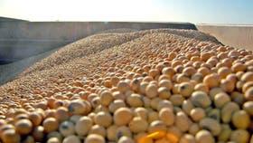 En la Bolsa de Chicago, los granos volvieron a cerrar con resultado negativo