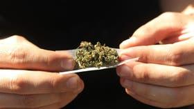 La ONU pidió despenalizar la tenencia de drogas para consumo